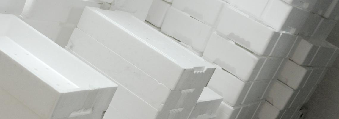 What to do with Expanded Polystyrene